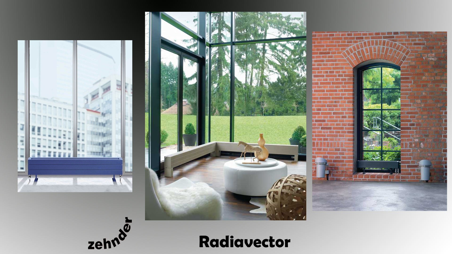 Radiavector